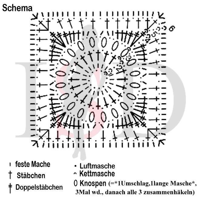 omas quadrat schema